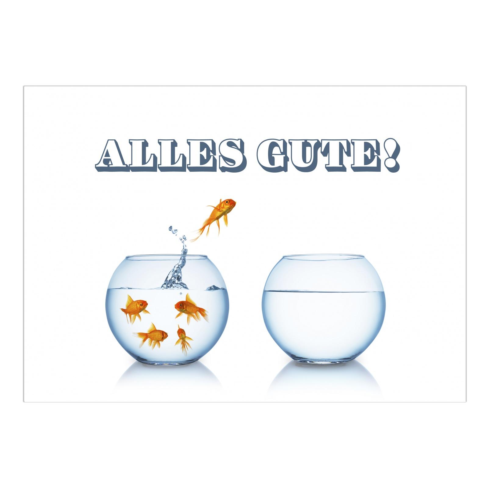 Gro e abschiedskarte umschlag a4 goldfische abschied for Abschied kollege ruhestand
